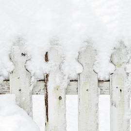 Marianne Campolongo - Snow on a white picket fence