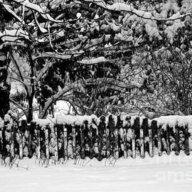 Frank J Casella - Snow on the Fence