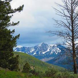 Connor Ehlers - Snow Peak