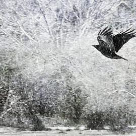 Theresa Tahara - Snow Storm With Crow