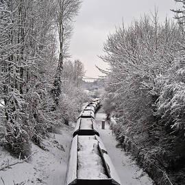 Neil James Brain - Snow Train