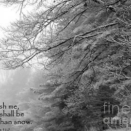 Birdlegs Photography - Whiter Than Snow