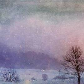 Christine Belanger - Snowfall at dusk