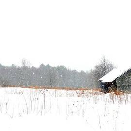 Geoffrey Coelho - Snowfall at Spectacle Pond Farm