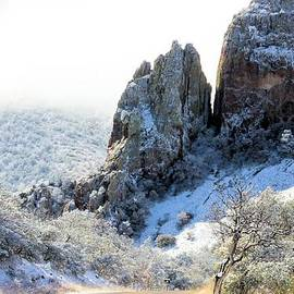 G Berry - Snowing In Big Bend #3
