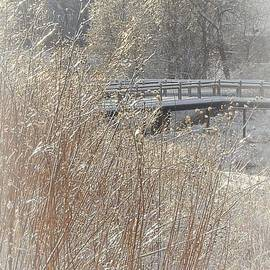 Barb Lowry - Snowy Bridge