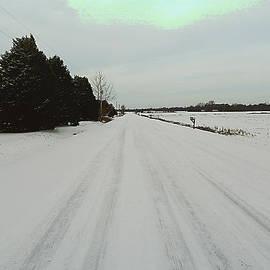 Michael Genova - Snowy Country Road