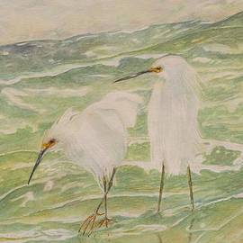 Hannah Boynton - Snowy Egrets