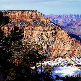 Janice Sakry - Snowy Grand Canyon Vista