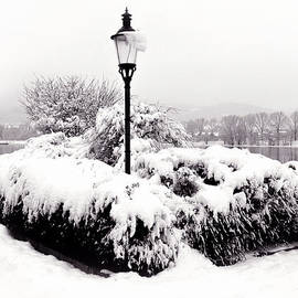 Menega Sabidussi - Snowy Lamp Post by the River Danube