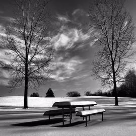Dan Sproul - Snowy Morning In Black And White