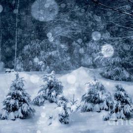 Deena Athans - Snowy Night