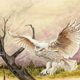 Mildred King - Snowy Owl