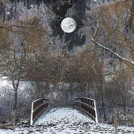 Michael Rucker - Snowy Park