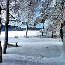 Janice Drew - Snowy Picnic Grounds