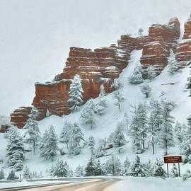 Lori Deiter - Snowy Red Canyon