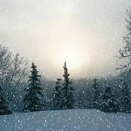 Shirley Sirois - Snowy Scene