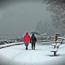 Brian Chase - Snowy Seawall Walk