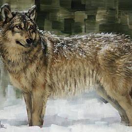 Margaret Stockdale - Snowy Wolf