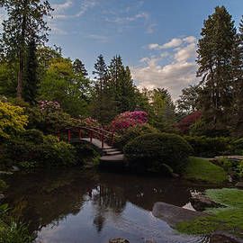 Mike Reid - Soaring Garden Vistas