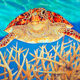 Daniel Jean-Baptiste - Sea  Turtle Soaring over Staghorn