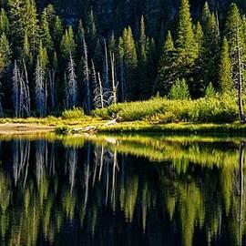 Lynn Bauer - Socher Lake Panorama