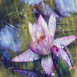Carol F Austin - Water Lily Photography Tender Moments