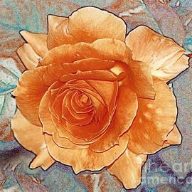 Magdalen DgArtStudio - Soft Colour Rose
