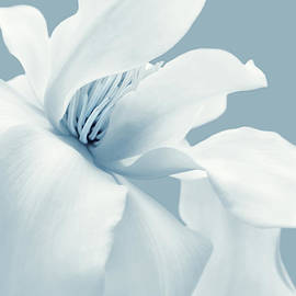 Jennie Marie Schell - Lady Sings the Blues White Magnolia Flower