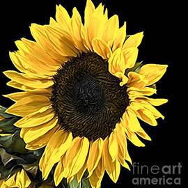 Sheila Laurens - Softly softly Sunflower