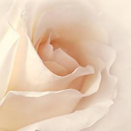 Jennie Marie Schell - Softness of a Peach Rose Flower