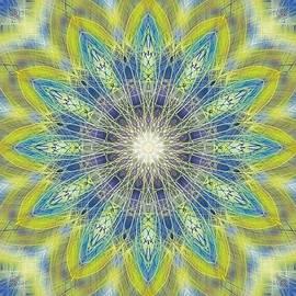Michael African Visions - Solar Aura