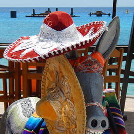 Michael Hoard - Sombreros The Donkey And The Sea