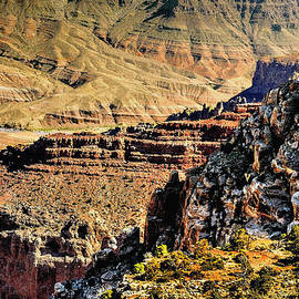 Bob and Nadine Johnston - Some Views from Moran Point -  Grand Canyon