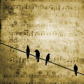 Andrea Kollo - Song Birds Music