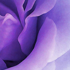 The Art Of Marilyn Ridoutt-Greene - Soul of Divine Rose