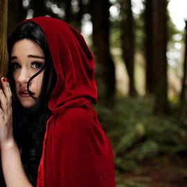 Lisa Knechtel - Sounds in the Woods