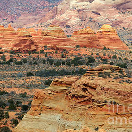 Bob Christopher - South Coyote Buttes 1