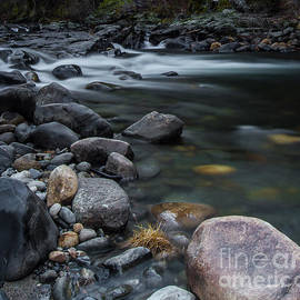 Mitch Shindelbower - South Fork American River