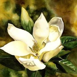 Alfred Ng - Southern Magnolia