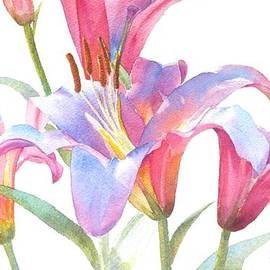 Pat Yager - Space Mountain Lilies