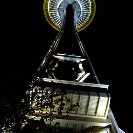 Ana Lusi - Space needle at night