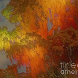 Elizabeth McTaggart - Spanish Moss / Golden Veils