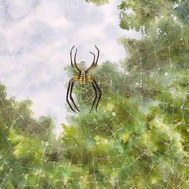 Jennifer  Creech - Spider in Web #2