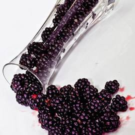 Shirley Mangini - Spilt BlackBerries