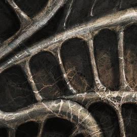 Petri Naumanen - Spine Deco
