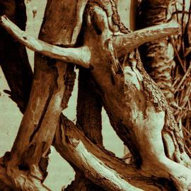 Gustave Kurz - Spirit of The Cypress