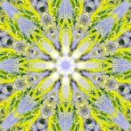 Michael African Visions - Spiritual Web