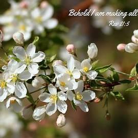 Lynn Hopwood - Spring Blossoms 3