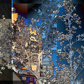 Miriam Danar - Spring Blossoms in the City - New York